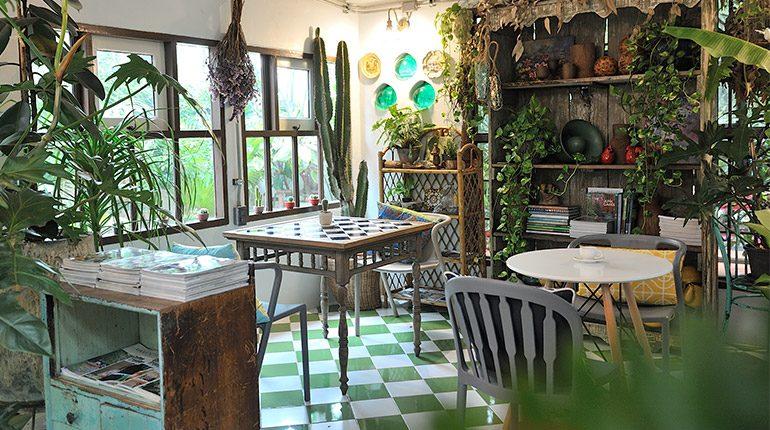 Prem cafe in the garden สวนเม็กซิกัน และคาเฟ่แคคตัสของนักจัดสวนมากฝีมือ