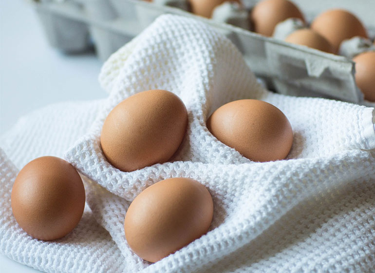 egg-Kitchen.845